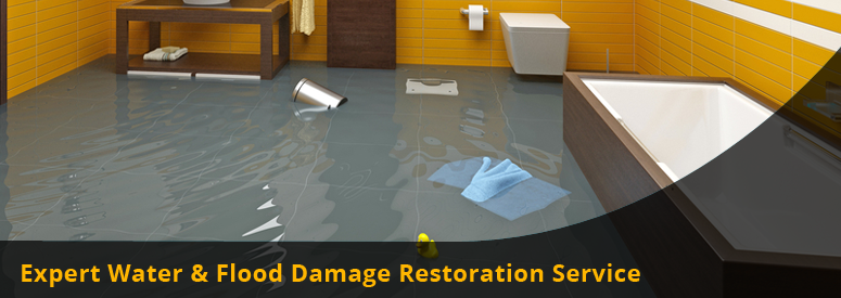 Water and Flood Damage Restoration Thousand Oaks CA